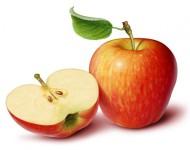 Jabuka sadnice